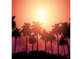 日落天空映衬下的棕榈树景观_4550110