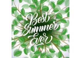 有史以来最好的夏季季节性海报白色背景上_2538719