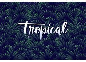 树叶背景上的热带字母_7945697
