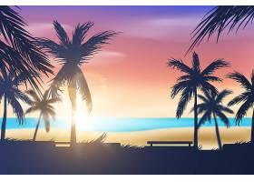 棕榈剪影和海滩背景_8247819
