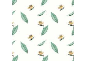 天堂鸟花卉插图_3755981