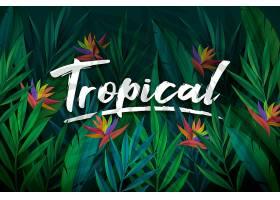 以树叶和花朵为背景的热带文字_7970752