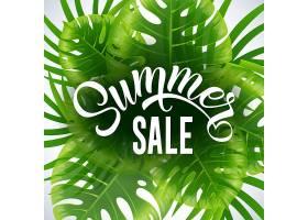 夏季促销季节海报白色背景上有热带树叶和_2542092