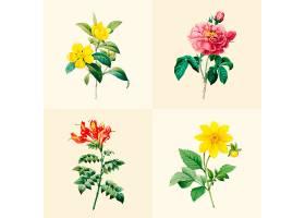 一套美丽的盛开的野花_3529973