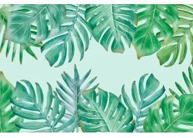 背景为热带树叶和空白空间_7971346