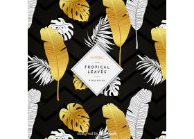 黑色和金色热带树叶背景_4256987