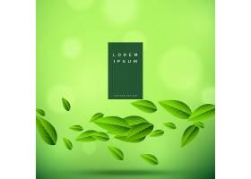 漂浮着树叶的生态绿色背景_2588460
