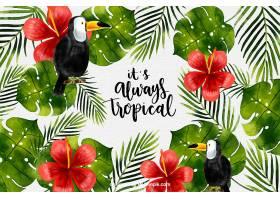 热带背景有水彩植物和巨嘴鸟_2520286
