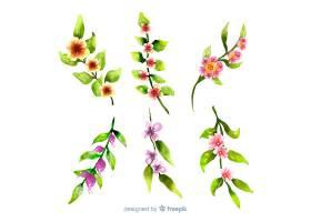 白色背景上五颜六色的树叶和花朵_5445545
