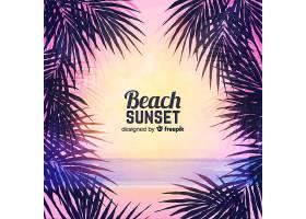 海滩的日落棕榈树的剪影_4551117