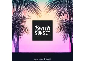 海滩的日落棕榈树的剪影_4551120