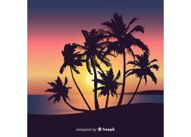 海滩的日落棕榈树的剪影_4566236