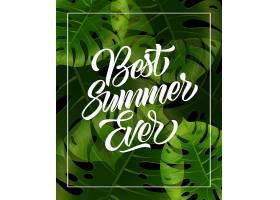 用热带树叶在相框里刻上有史以来最好的夏天_2438255