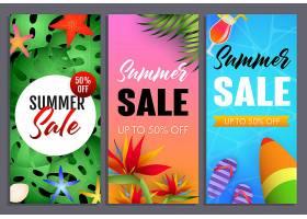 夏季促销标语套装热带植物和冲浪板_4561277