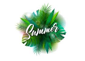 夏季插图配有排字字母和热带植物_4939449