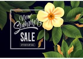 夏季新促销活动最高可打五折_2438712