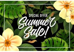夏季特价促销并配以热带植物相框_2541700