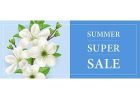 夏季特卖横幅白色盛开的苹果树枝蓝色背_2542136