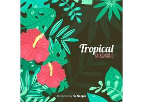 五颜六色的热带背景带着叶子和鲜花_2742407