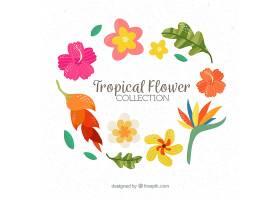 五颜六色的热带背景带着叶子和鲜花_2742411