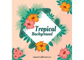五颜六色的热带背景平面设计_2713722