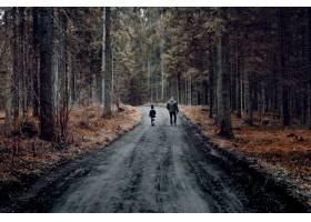 一名男子带着孩子走在被树木覆盖的森林包围_10860903