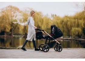 年轻的母亲推着婴儿车在公园里散步_8380412