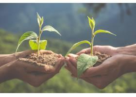 儿童花园的环境保护_5219380