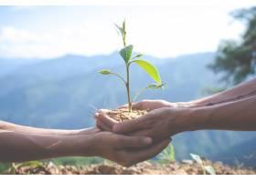 儿童花园的环境保护_5219387