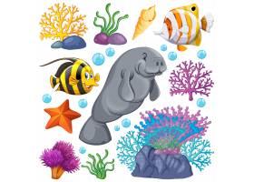一套白色背景的海洋生物和珊瑚_8700397