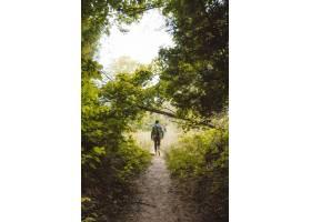 垂直拍摄的一名男子背着背包走在树木和植物_7814456