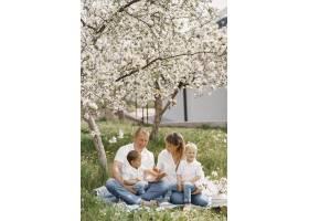 可爱的一家人在夏日的院子里玩耍_9344621