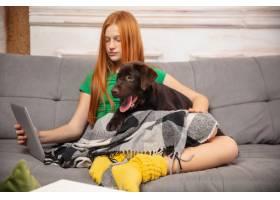可爱的女孩和小狗在沙发上拥抱使用现代设_11530338