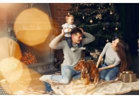 一家人在圣诞树附近的家里养着可爱的狗_11242658