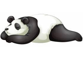 熊猫_2748621