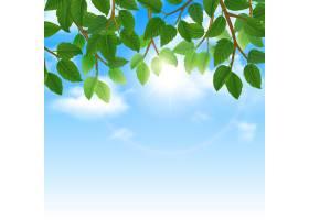 生态自然世界友好的生活方式绿叶天空背景边_3817853
