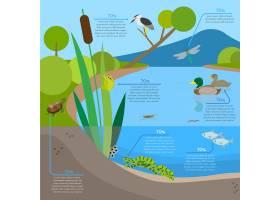 栖息地动物的生态系统背景信息图_2879878