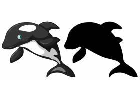 虎鲸人物及其在白色背景上的剪影_10162891