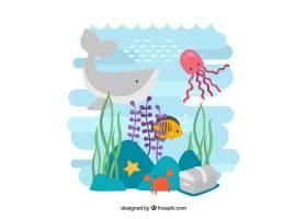 海洋生物背景_889484
