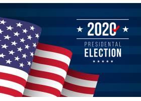 2020年美国总统大选壁纸_10115265