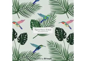 2D热带树叶和鸟类背景_4256954