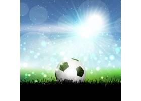 足球依偎在草地上映衬着蔚蓝的阳光_893204