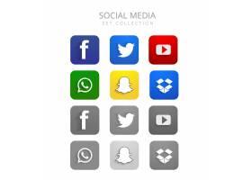 美丽多彩的社交媒体图标集矢量_3224043