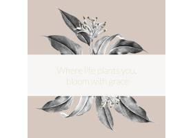 热带植物横幅插图_3755973