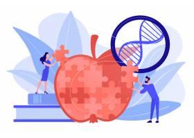 科学家们在做苹果拼图游戏转基因生物和工_11664294