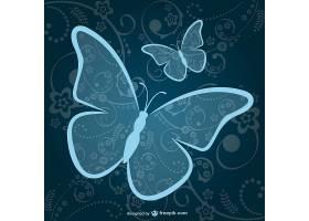 观赏蓝蝴蝶背景_725233
