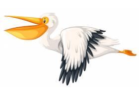 一只在白色背景上飞行的鹈鹕_3518890