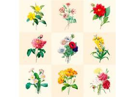 一套美丽的盛开的野花_3416468