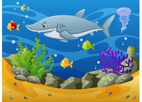 水下的鲨鱼和其他海洋动物_1170707