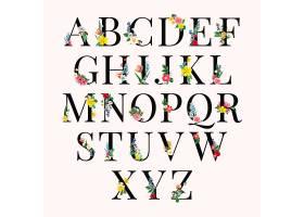 字母花卉背景插图_3853852